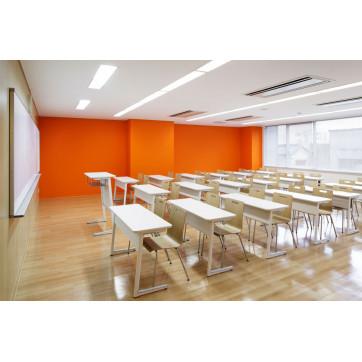 Светодиодное освещение в образовательных учреждениях